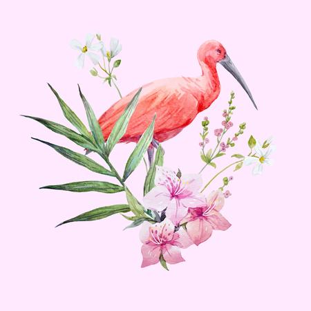 Composição de vetor de pássaro aquarela de íbis Foto de archivo - 93891872