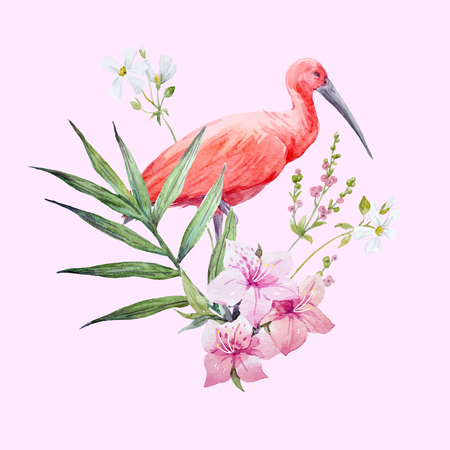Watercolor ibis bird vector composition