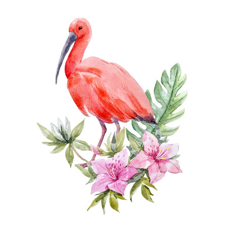 Watercolor ibis bird composition