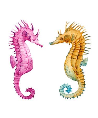Watercolor sea horse vector set