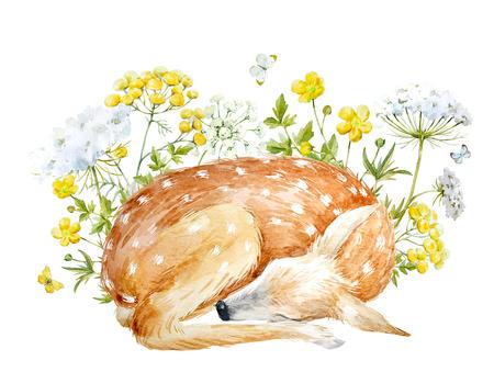 Composición floral de la acuarela con los ciervos Foto de archivo - 95120205