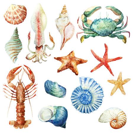 Akwarela zestaw podwodnego życia