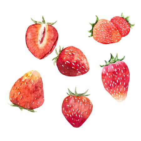 Watercolor strawberry vector set