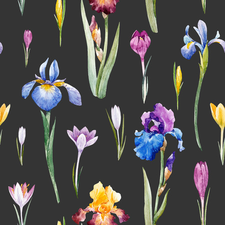 Beautiful vector seamless pattern with watercolor hand drawn spring crocuses hyacinths irises flowers. 스톡 콘텐츠 - 95916748