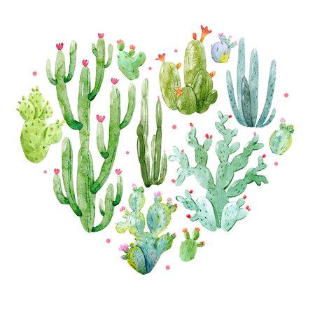 Watercolor cactus heart composition