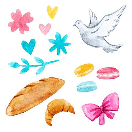 Watercolor illustrations set