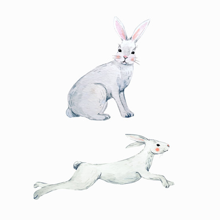 Watercolor vector rabbit set illustration on white background.