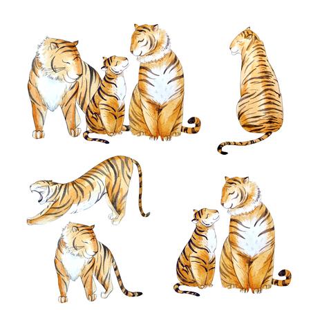 Watercolor tiger set Stok Fotoğraf