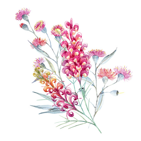 Watercolor australian grevillea composition