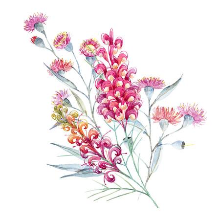 Watercolor australian grevillea composition