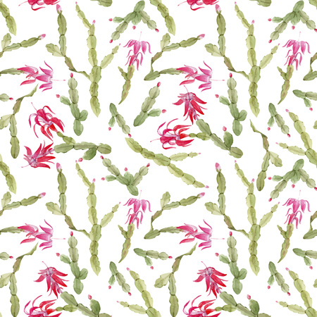 Schlumbergera cactus vector pattern Illustration