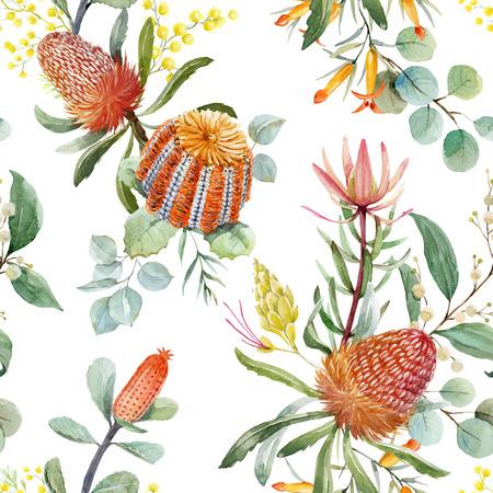 Watercolor australian banksia vector pattern Illustration