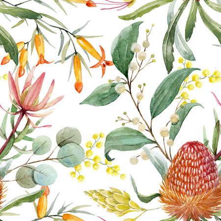 Watercolor australian banksia floral pattern