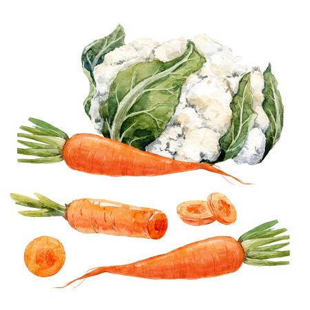 Watercolor carrot and cauliflower set