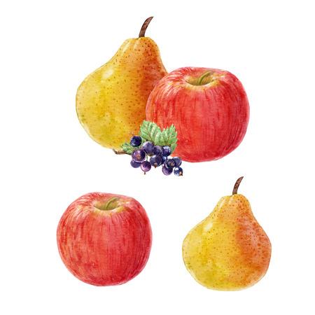 Watercolor fruit composition