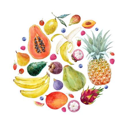Watercolor exotic fruits composition Standard-Bild - 102666314