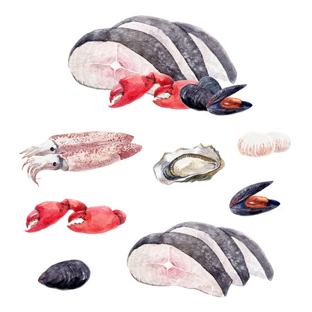 Watercolor sea food set