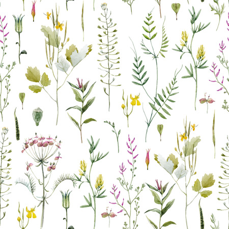 Beautiful vector seamless pattern with watercolor wild field summer flowers Ilustração