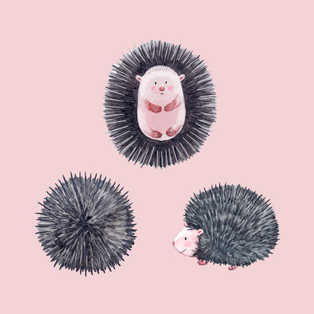 Beautiful vector set with watercolor hand drawn hedgehogs
