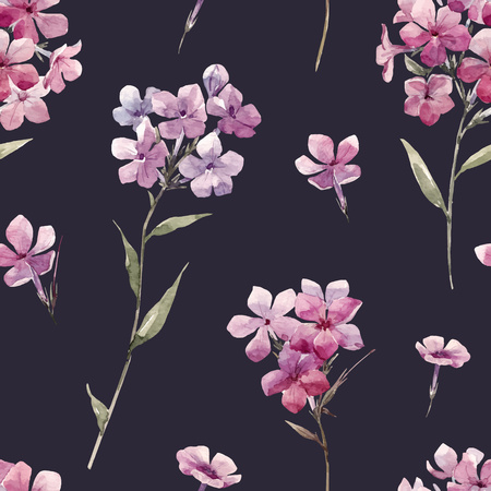 Beautiful vector seamless pattern with watercolor hand drawn phlox flowers Illustration