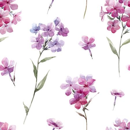 Watercolor floral phlox  pattern