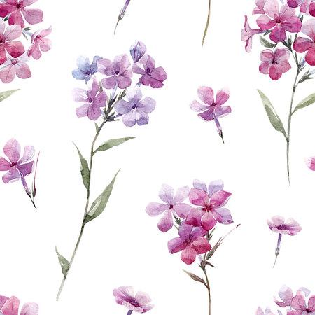 Watercolor floral phlox pattern Stock Photo