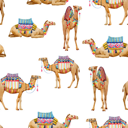 Bello reticolo senza giunte di vettore con i cammelli africani dell'acquerello
