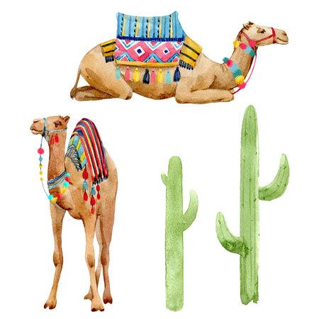 Watercolor camel illustration Stockfoto