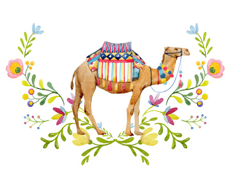 Watercolor camel illustration 写真素材