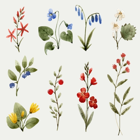Beautiful vector seamless pattern with hand drawn watercolor flowers  イラスト・ベクター素材