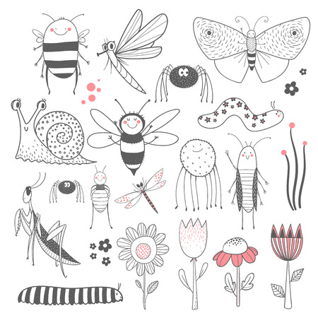 Insect vector set 스톡 콘텐츠 - 109547565