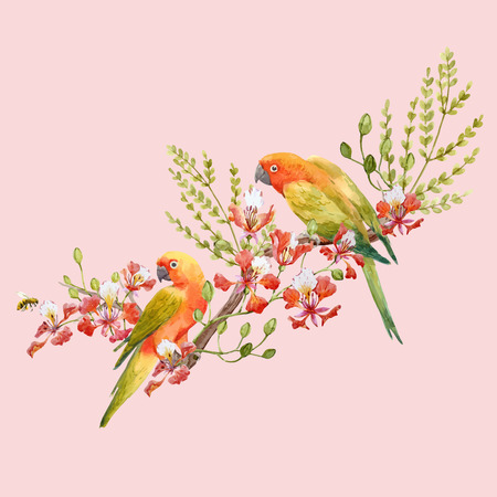 Watercolor tropical parrots vector composition Banco de Imagens