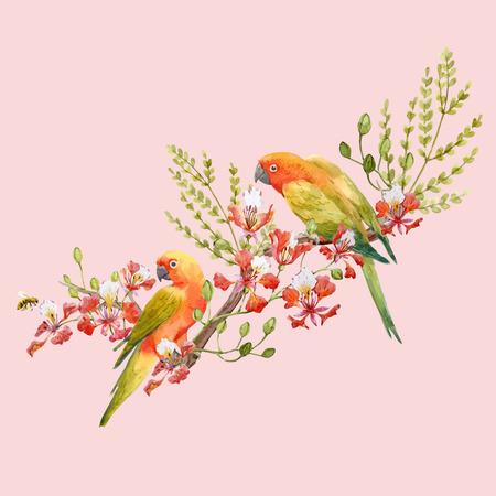 Watercolor tropical parrots vector composition 版權商用圖片