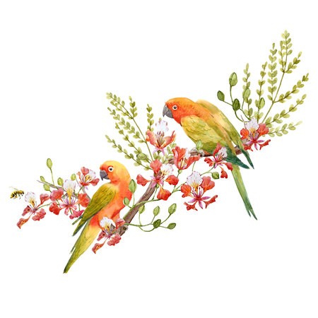 Watercolor tropical parrots composition