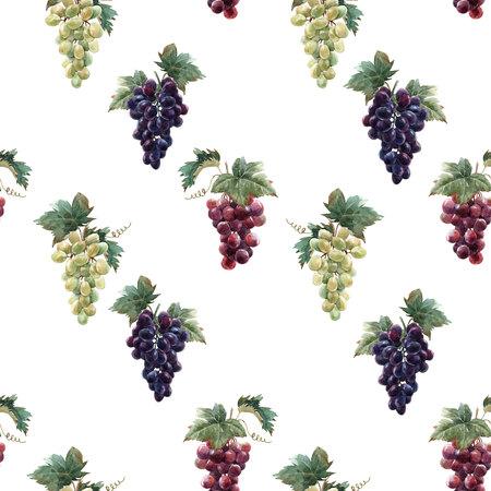 Watercolor grape pattern Stok Fotoğraf