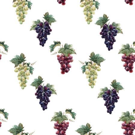 Beautiful vector seamless pattern with hand drawn watercolor grapes