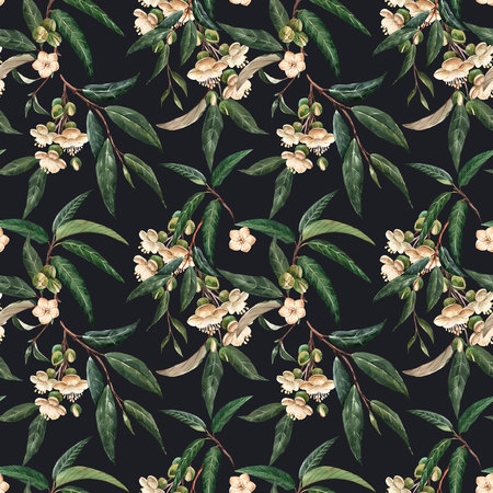 Watercolor durian tropical seamless pattern Banque d'images