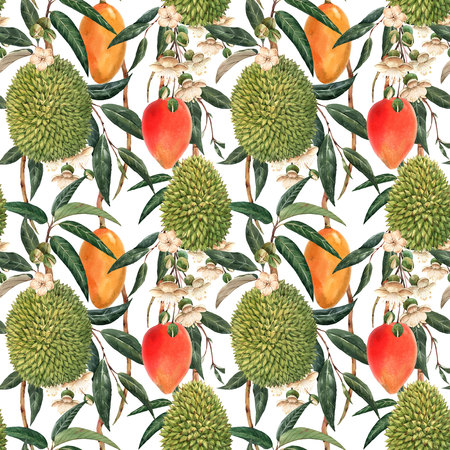 Watercolor durian tropical seamless pattern Фото со стока