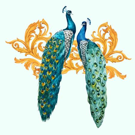 Piękna kompozycja wektorowa z ręcznie rysowanymi pawiami akwarelowymi ze złotymi elementami