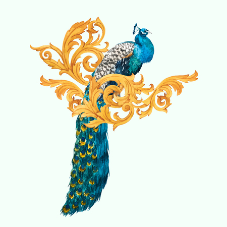 Beautiful vector composition with hand drawn watercolor peacocks with gold elements
