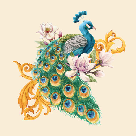 Beautiful vector illustration with hand drawn watercolor magnolia flowers and peacock  イラスト・ベクター素材