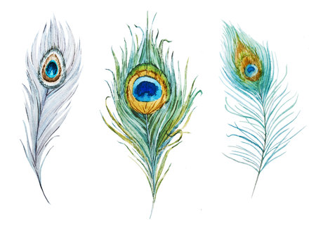 Watercolor peacock feather set Stock fotó - 117117995
