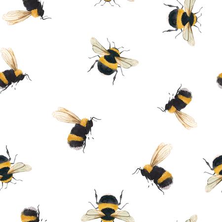 Beau modèle sans couture de vecteur avec l'insecte de guêpe d'abeille de bourdon d'aquarelle