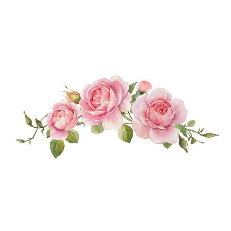Hermosa composición de vectores con rosas acuarelas dibujadas a mano