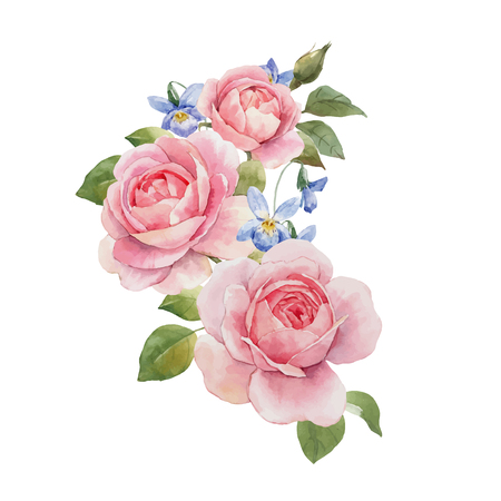 Beautiful vector composition with hand drawn watercolor roses Vektorové ilustrace