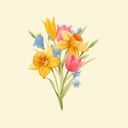 Beautiful vector bouquet with hand drawn watercolor spring flowers Illustration