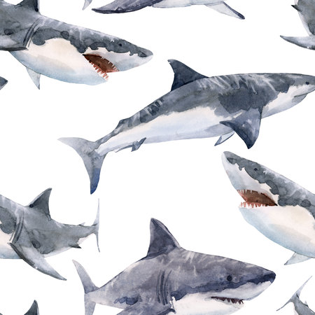 Watercolor shark pattern 스톡 콘텐츠