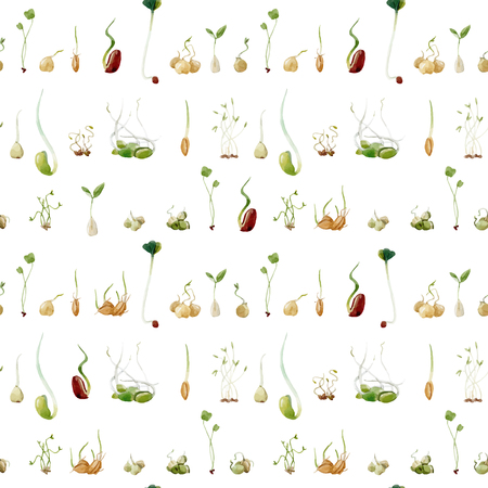 Beautiful seamless pattern with soybeans beans peas seeds sprouts salad vegetarian food illustrations