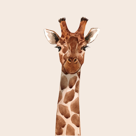 Beautiful watercolor hand drawn giraffe head vector portrait Vettoriali