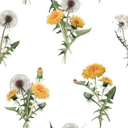 Patrón floral transparente hermoso vector con flores de blowball de diente de león acuarela
